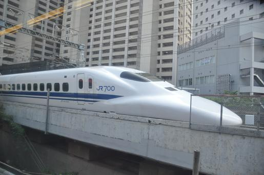 DSC_0208a.JPG