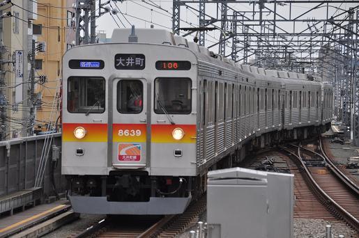 DSC_0269a.JPG