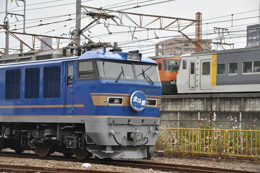DSC_0892a.JPG