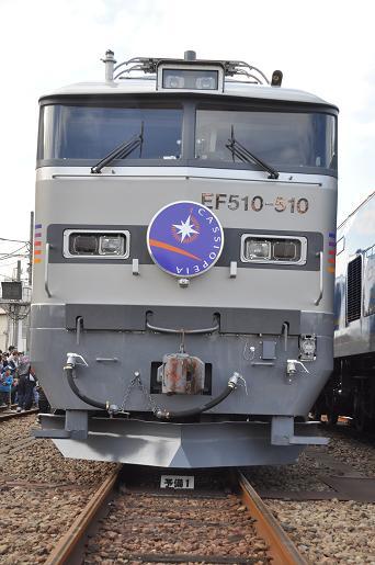 DSC_1166a.JPG