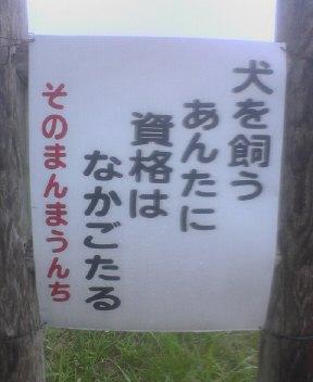 3NEC_0188.JPG