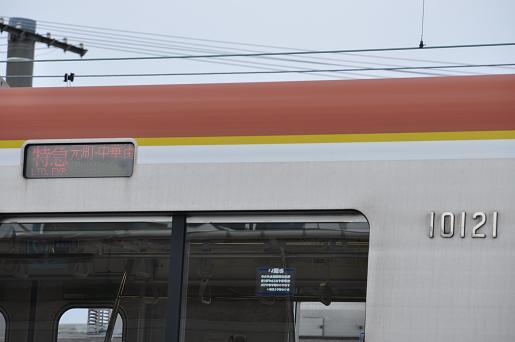 DSC_0111a.JPG