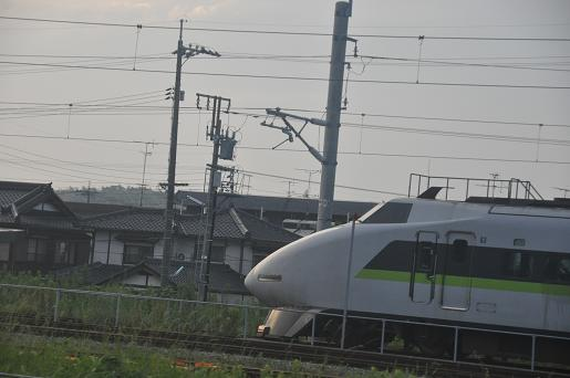 DSC_0606a.JPG