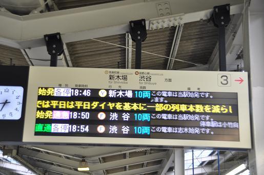 DSC_0608a.JPG
