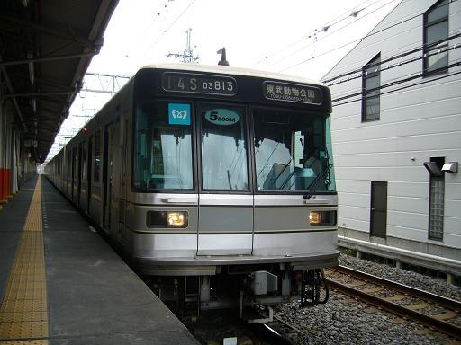 P1300708.JPG