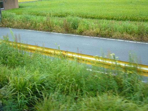 P1340359(この列車各駅停車山口行き。次は徳佐).JPG